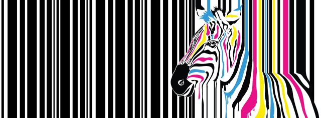 ChiPRINT-Facebook-Rainbow-zebra